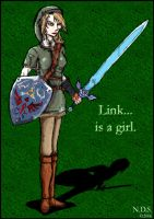 Lady Link by NickDSchultz