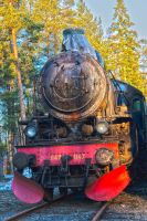 Steamtrain by canibull