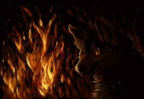 Fire Eyes by Crowstorm