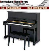 Professional Piano Movers by parratonisha