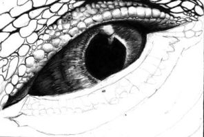 Iguana Eye-WIP by chandito