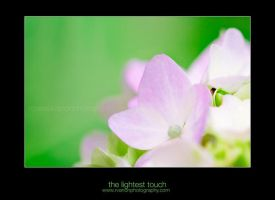 the lightest touch by Julietsound