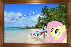 Rainbow and Fluttershy on the Beach by Paris7500