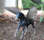 Custom Breyer Pegasus With Starling Wings by lupagreenwolf