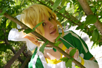 Lyfa Cosplay 08 by Biko-chan