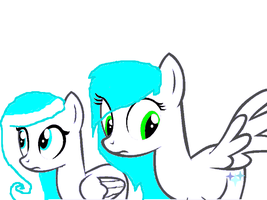 we dont know were it is by SnowPony1234
