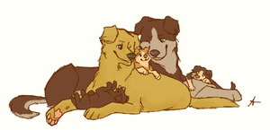 Sabriel pups by FourDirtyPaws