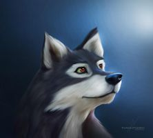 Balto by ThreshTheSky