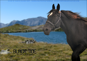Black-Tide by FamousShamus109