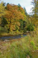 Neshannock Creek by GlassHouse-1