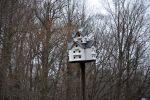 Bird House by FairieGoodMother