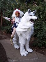 Princess Mononoke and Wolf by LilleahWest