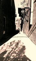 alley way by capturedpoetry