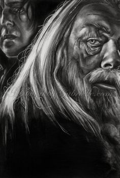 Dumbledore and Snape by gabbyd70