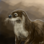 Random Doodle - Otter by 0paperwings0