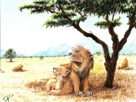 Lions In The Shade by Kalel06