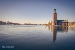 Stadshuset in the water by olideb08