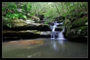 westleigh waterfall 2008 - 2 by Jonothelad