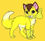 Belle as a Kitty Cat by Kimberly-AJ-04-02