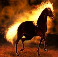 Fire horse by Lord-Zeto