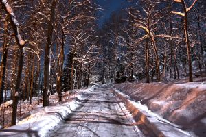 Winter Road HDR by Greatmalinco