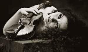 Violin. by nedira