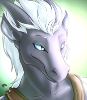 Narokh's portrait commission. by Shalinka