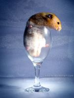 Hamster Wine - 3 by eldris