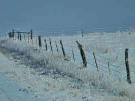 snowy fence 19 by fotophi