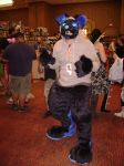 Steel at his 1st Debut! a-kon 23 by IcedSteelWolf