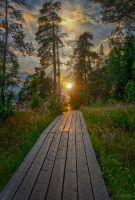 Valaam islands....  _21_ by my-shots