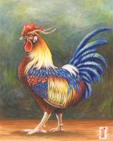ROOSTER by toniart57