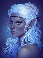 Commission: Dark Elf by dimary