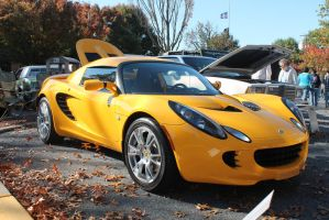 Lotus In The Leaves by SwiftysGarage
