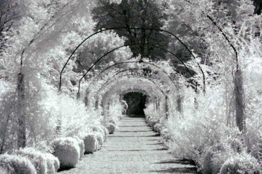 Archway IR by Eastcoasthardcore
