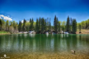 Duck and Dog Lake HDR by mjohanson