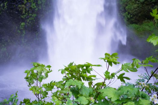 waterfall by pungen