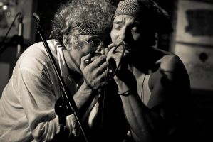 Harmonica Jam Session by oldschoolowyradeg