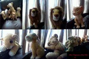 Lions I bought from Laurel-Lion by Heatherannpt