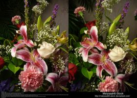 Stargazer Lily Arrangement Stock 2 by Melyssah6-Stock