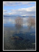 Aguas del Lago Ranco by msubiabre