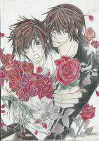 Red Roses by ShadowofChaos666