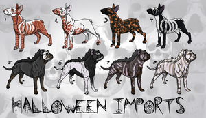 Halloween Magious and Rumi Sonqo import auction by modifiedMONSTER