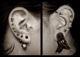 ear piercings 21-09-08 by bamkorn