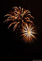 Fireworks 2 by grugster