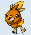 Torchic doodle by rongs1234