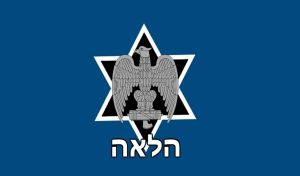 Israeli Nationalist Action Party Flag. -fictional- by AmericanSFR