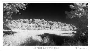 Boyne Walk-IR by Shaystyler
