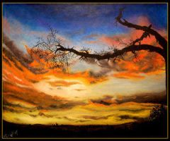 Sunset and Trees - 3rd place by sunsets