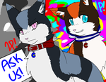 Ask away~ by Ask-Colorado-Cats